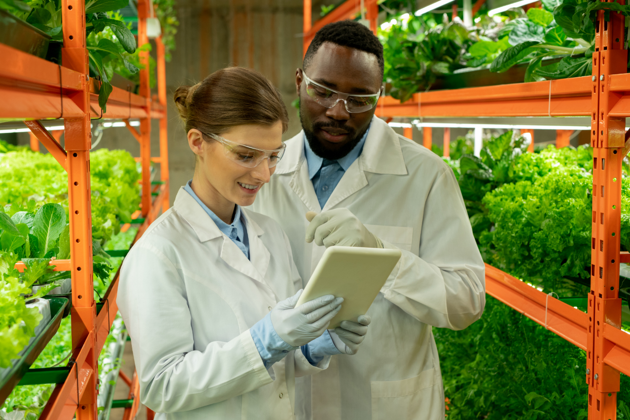 Greenhouse engineers maintaining ambient environmental controls